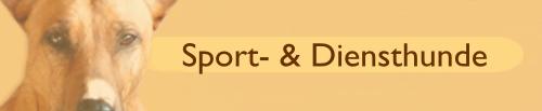 Sport- & Diensthunde
