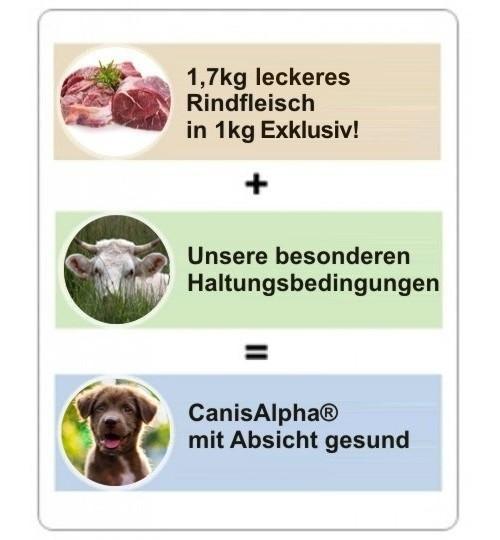 Allerbestes Weiderindfleisch, Menhaden-Hering, Kartoffelflöckchen, Heidelbeeren & Chicoree - EXKLUSIV Hundefutter