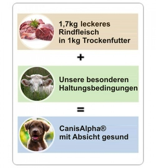 Rind Spezial ohne Getreide, Kartoffel oder Pseudogetreide Hundefutter