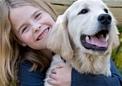 Spezielle Hundefutter Nahrungskonzepte, Low Carb