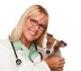 Canis Alpha Gesundheitsportal
